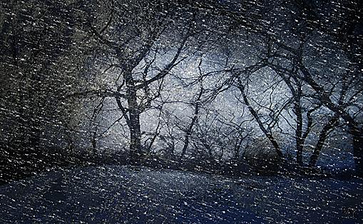 Landscapes: Blizzard