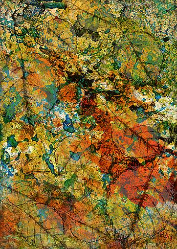 Cliché Verre No. 207: Summer into Autumn